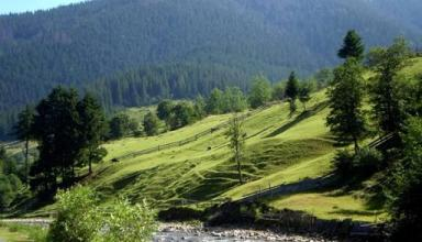 Отдых в Закарпатье с каждым годом становится все более популярным