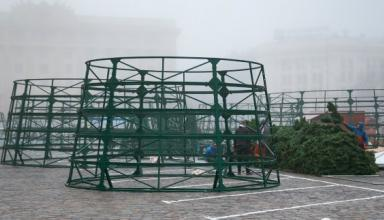 В Украине начали устанавливать новогодние елки (видео)
