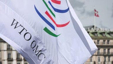 Киев обжаловал решение ВТО о пошлинах на удобрения