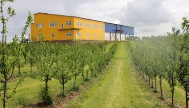 На Львівщині фермер вирощує персики та вишні за допомогою власної метеостанції та інтернет-технологій