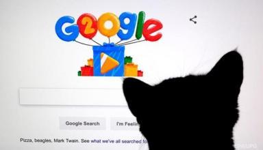 Утечки из Google+. Провальные продукты компанииСюжет