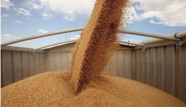 Украина обновила рекорд по экспорту зерна