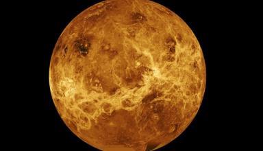 Самое важное открытие. На Венере нашли следы жизниСюжет