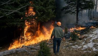 Синоптики предупреждают о чрезвычайной пожарной опасности в Украине