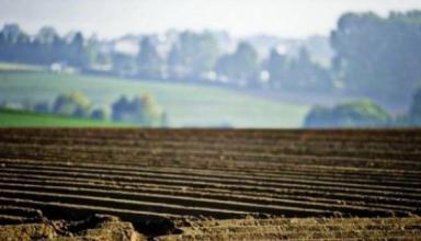 Суд отказался открывать производство относительно моратория на продажу земли