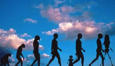 Генетики заявили, что человек продолжает эволюционировать