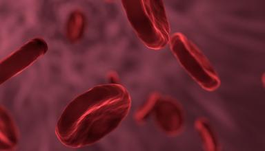 Определена самая опасная группа крови