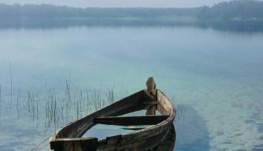 Шацкие озера: оздоровительный отпуск на самом большом озере Украины и прогулки по хвойным лесам