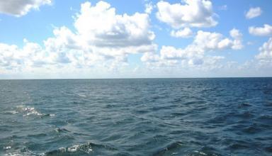 Начался третий этап исследований экологического состояния Черного моря с участием украинских ученых