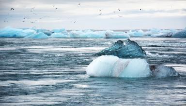 Ученые назвали шесть шагов, чтобы уменьшить последствия изменения климата