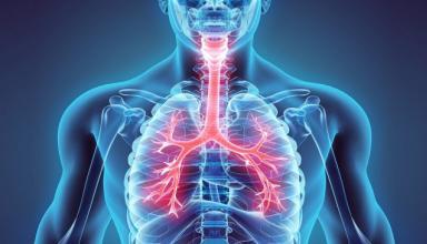 Грязный воздух уменьшает продолжительность жизни более чем на год