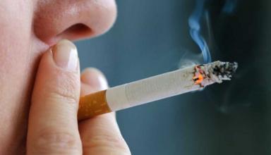 Открыт новый механизм пагубного влияния никотина на мозг