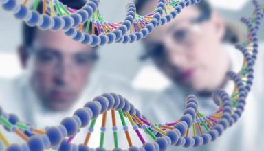 Ученые нашли эффективное средство против рака