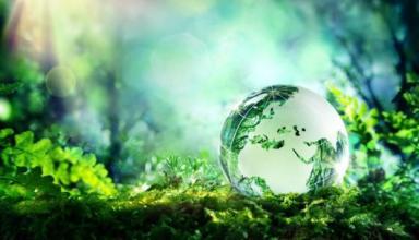 В Україні набирає обертів екотероризм