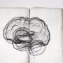 Ученые выяснили, как максимально использовать ресурсы мозга